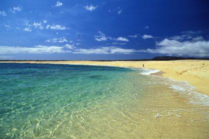 hawaii budget vluchten